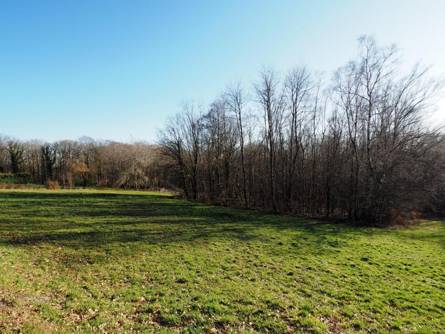 AUXELLES-HAUT – terrain de 4175 m2 à vendre, calme, ensoleillé, vue montagne