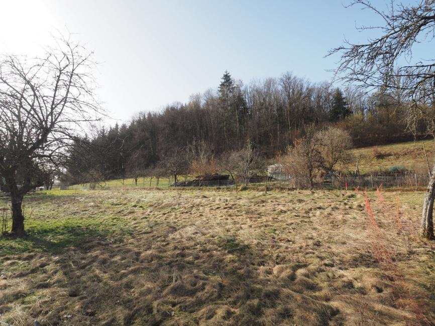 Giromagny – terrain plat de 808 m2 au calme vue nature